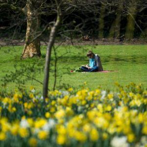 Pogoda marzec 2017: więcej zimy czy wiosny?