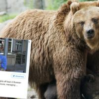 Grzybiarz znokautował niedźwiedzia, jak w filmie Zjawa z Leo DiCaprio [FOTO]
