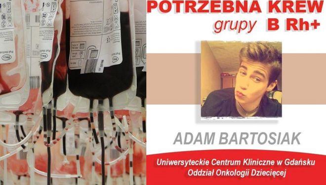 Pilnie Potrzebna Krew B Rh Dla 17 Letniego Adama Z Gdańska