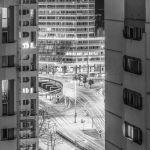 Miejska dżungla w czerni i bieli [ZDJĘCIE]