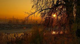 Trasy rowerowe na Podlasiu. Wyruszając z Białegostoku poznasz piękno okolicznych terenów [OPIS TRAS]