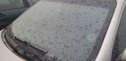 Żółty pył na samochodach w Łodzi? Wiemy co to jest!