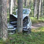 Pijani młodzi wracali z imprezy. Rozbili samochód w lesie i… zasnęli! [ZDJĘCIA]