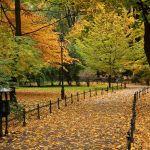 Jesień w Krakowie [ZDJĘCIE DNIA]