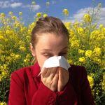 Co pyli w maju i czerwcu w Szczecinie? Porady dla alergików, kalendarz pylenia [ZACHODNIOPOMORSKIE]
