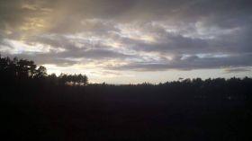 Pochmurne niebo nad lasem na Glinkach [ZDJĘCIE DNIA]