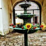 Mini fontanna na Zamku [ZDJĘCIE DNIA]