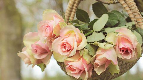 Dzień Matki 2017 na Śląsku! Zrób mamie wyjątkowy prezent w śląskim stylu! [PROPOZYCJE]