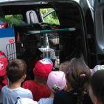 Poznań: Dzieci nie mogły wyjść z przedszkola. Zostało oblężone przez… stado dzików!