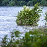 IMGW ostrzega: W Małopolsce mogą gwałtownie wzrosnąć stany wód!