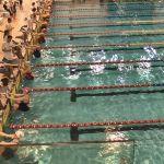 Bydgoszczanie z medalami! Dobre wieści z International Swimming Cup 2017