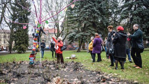 Pierwsze drzewo w Parku Róż zakwitło na wiosnę! [ZDJĘCIA]