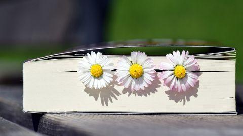Lektura na wakacje? Po te książki warto sięgnąć! [TOP 10]
