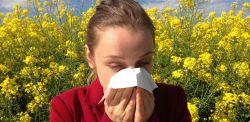 Co pyli w maju i czerwcu na Pomorzu? Porady dla alergików [KALENDARZ PYLENIA]
