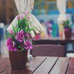 Te resturacyjne ogródki po prostu zachwycają! Gdzie we Wrocławiu wypijemy kawę w pięknym otoczeniu? [GALERIA]